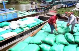 Lập đoàn kiểm tra thu mua tạm trữ lúa gạo