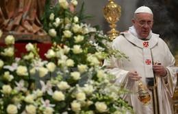 Vatican thắt chặt an ninh trước đe dọa của IS