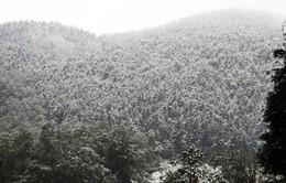 Lào Cai: Xuất hiện mưa tuyết ở Sa Pa