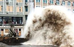 Siêu bão Chan-hom đổ bộ vào miền Đông Trung Quốc