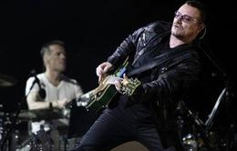 Thủ lĩnh nhóm U2 có thể phải từ bỏ guitar