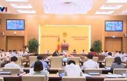 Chính phủ xin chủ trương sửa điều 60 Luật Bảo hiểm xã hội