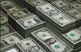 Đồng USD - Tài sản sinh lời nhất trong năm 2015