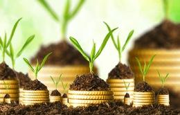Mở rộng đối tượng được hưởng ưu đãi đầu tư