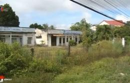 Tình trạng quản lý kém đang gây lãng phí đất đai nông, lâm trường
