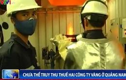 Chưa thể truy thu thuế hai công ty vàng tại Quảng Nam