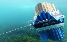 "Sepios - Thủy robot bơi bằng ""vây"""