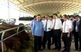 Triển vọng từ hai Hiệp định thương mại mới Việt Nam - Lào