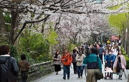 Nhật Bản nới lỏng quy định thị thực cho du khách Trung Quốc