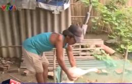 Vĩnh Long: Nhiều gia đình được hỗ trợ tiền tỷ nhưng vẫn nghèo