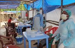 Sierra Leone bãi bỏ các biện pháp cách ly chống Ebola