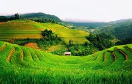 Báo Mỹ viết về những điều đáng để yêu mến ở Việt Nam
