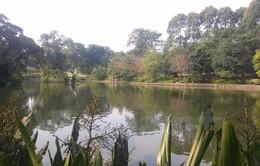 Vườn thực vật Singapore trở thành Di sản Thế giới