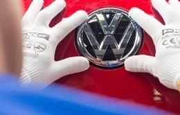 Volkswagen xin lỗi về bê bối khí thải