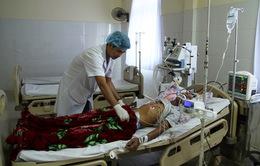 Lai Châu: Tiếp nhận 2 bệnh nhân nghi nhiễm khuẩn liên cầu lợn