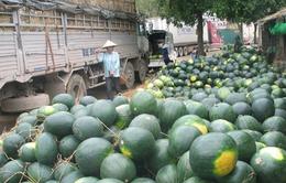 Tái diễn cảnh hàng nghìn tấn nông sản ùn ứ tại cửa khẩu Tân Thanh