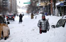 Bão tuyết làm tê liệt hoạt động giao thông tại Mỹ