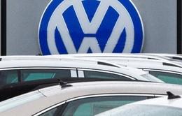 """Có sự """"bất thường"""" trong vấn đề khí thải của xe Volkswagen?"""