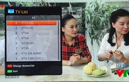 Khán giả hào hứng với chuẩn HD trên kênh VTV2