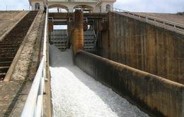 WB hỗ trợ 415 triệu USD cho Việt Nam cải tạo đập thủy lợi