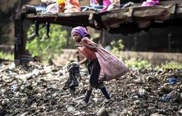 Mozambique: Kiếm kế sinh nhai từ bãi rác ô nhiễm khổng lồ