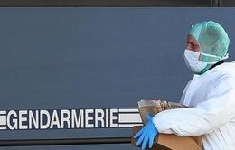 Đã xác định ADN của 78 nạn nhân vụ rơi máy bay Germanwings