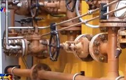 Bộ Tài chính: Nhập khẩu xăng dầu lợi hơn 2 tỷ USD nhờ giá giảm