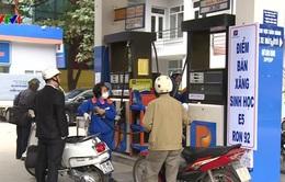 50% số cửa hàng tại 8 tỉnh, thành phải bán xăng E5 từ tháng 11