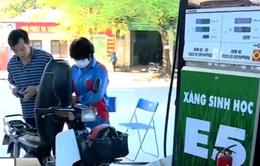 Kích cầu tiêu thụ xăng E5 bằng biện pháp hành chính