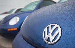 Đức xem xét kế hoạch thu hồi xe của Volkswagen