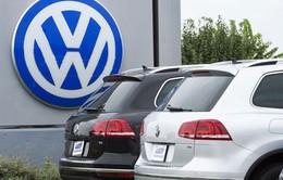Công ty luật Australia khởi kiện Volkswagen