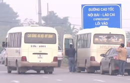 Xe bắt khách tràn lan trên cao tốc Nội Bài - Lào Cai