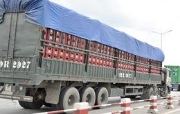 Hải Dương: Phát hiện 37 xe quá tải, phạt hơn 1 tỷ đồng