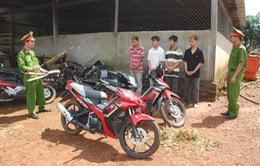 Trộm cắp xe máy liên tỉnh lộng hành tại khu vực ĐBSCL