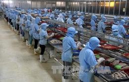 S&P: Kinh tế Việt Nam khởi sắc trong khi châu Á phát triển chậm lại