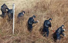 Nhật Bản: Bắt giữ 3 nghi phạm sát hại một thiếu niên