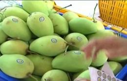Trái cây xuất khẩu: Còn nhiều thách thức