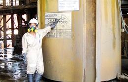 NHNN chưa cấp phép xuất khẩu vàng cho hai công ty