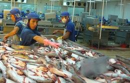 DN Việt xuất khẩu cá da trơn gặp khó khi Mỹ áp dụng quy định cuối cùng