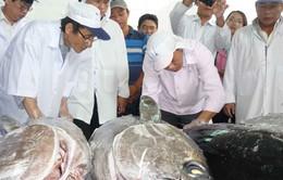Xuất khẩu chuyến cá ngừ thứ 2 sang Nhật