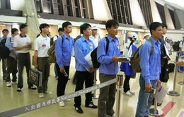 Thêm 5 công ty bị tạm dừng đưa lao động sang Đài Loan