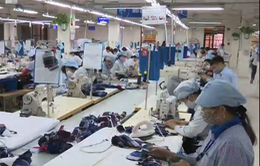 DN xuất khẩu Việt  gặp khó vì tỷ giá