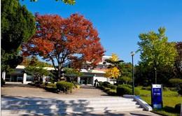 Hà Nam hợp tác giáo dục với trường Đại học Yeung Nam (Hàn Quốc)