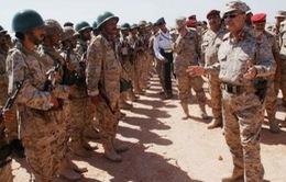 Yemen: Lực lượng ủng hộ chính phủ giành lại tỉnh Daleh