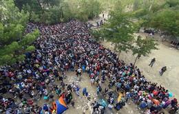 Macedonia – điểm nóng mới của cuộc khủng hoảng di cư châu Âu