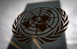 Liên Hợp Quốc ghi nhận 99 cáo buộc tội quấy rối tình dục