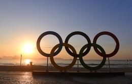Tất cả các VĐV Nga sẽ bị cấm tham dự Paralympic 2016