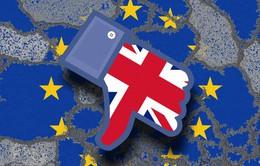 Anh gấp rút chuẩn bị cho kịch bản rời EU