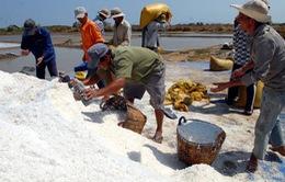 TP.HCM: Hỗ trợ mua muối tồn đọng cho diêm dân