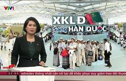 Hàn Quốc tiếp nhận lại lao động Việt Nam sau 3 năm: Vừa mừng vừa lo